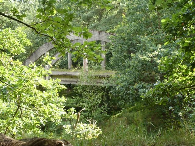 Uroczysko Mosty – Tajny poligon Wehrmachtu