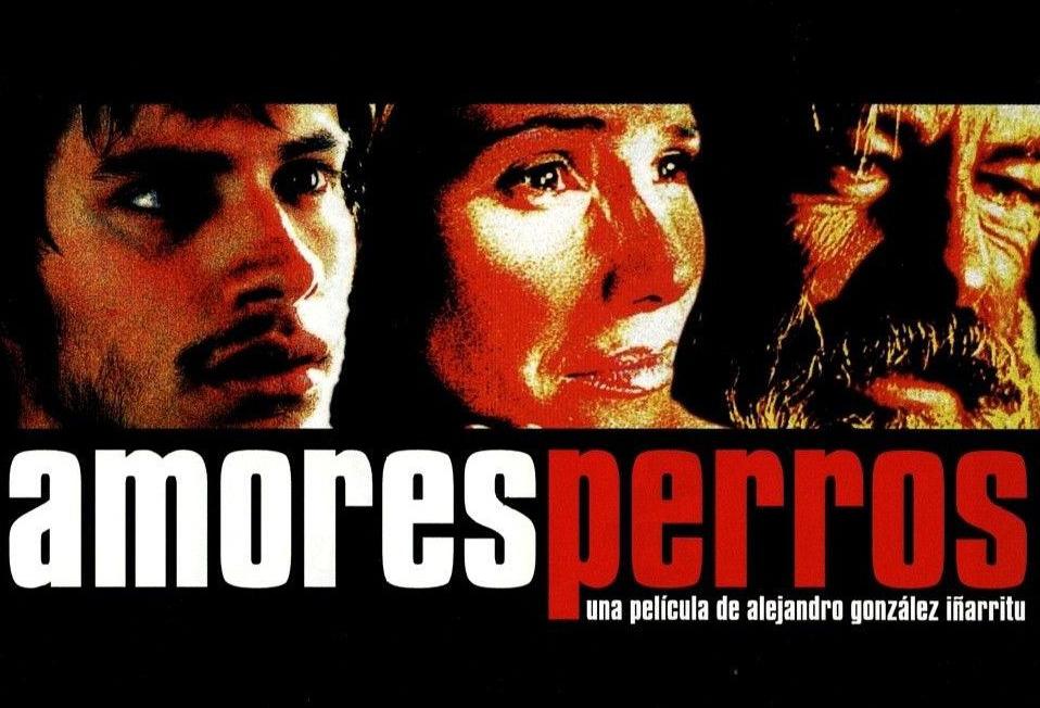 Amores Peros, reż. Alejandro González Iñarritu