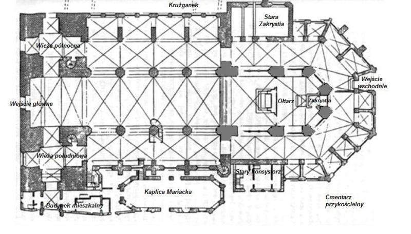 Kościół Mariacki nekropolia Gryfitów